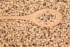 Black Eyed Peas Royalty Free Stock Photography