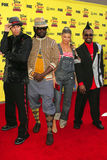 Black Eyed Peas obraz royalty free
