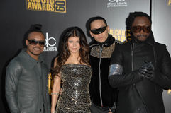 Black Eyed Peas obraz stock