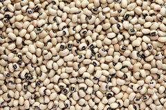 Black eyed peas. Background. Close-up Stock Image