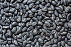 Black Eyed Peas background Royalty Free Stock Photos