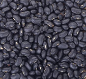 Black eyed peas beans for background Royalty Free Stock Photos