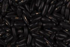 Black eyed peas beans Stock Image