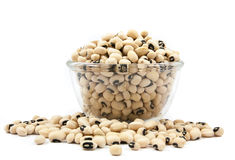 Black eyed peas beans on wood cup isolated Royalty Free Stock Image
