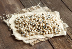 Black eyed peas close up Royalty Free Stock Images