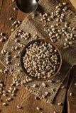 Black Eyed Peas seco orgánico Imagen de archivo libre de regalías