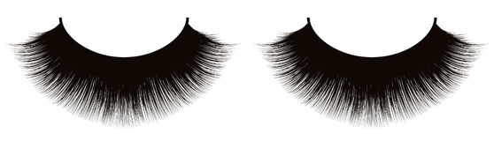 Black eyelashes Stock Photography