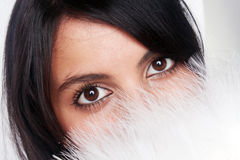 Black eyes. The girl has covered with a fan the person, eyes are visible only Stock Photography
