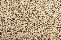 Black eyes peas beans background Stock Images