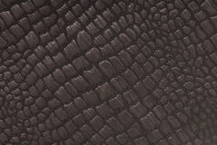 Black fabric with crocodile pattern Stock Photo