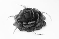 Black fabric rose Stock Images