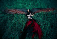 Black fallen angel Royalty Free Stock Photos