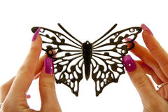 Black fashion Butterfly. Two female hands holding black fashion butterfly over white stock image