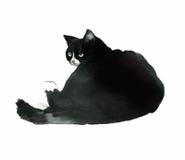 Black fat watercolor cat Stock Image