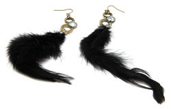 Black Feather Fashion Earrings. In style black feather and brass gold pair of earrings isolated on white background Royalty Free Stock Photo