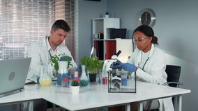 Black female research scientist giving his colleague test-tubes with fertilizer and then making experiments. With different samples in chemistry lab stock footage
