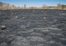 Black field after the fire Royalty Free Stock Photography