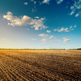 Black field after harvesting and blue sky Stock Photography