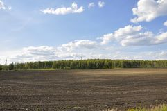Black field with trees far away. Cultivated area. Agriculture. Bright blue sky and green grass.  stock photos
