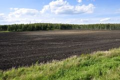 Black field with trees far away. Cultivated area. Agriculture. Bright blue sky and green grass.  stock photo