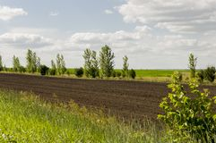 Black field with trees far away. Cultivated area. Agriculture. Bright blue sky and green grass.  stock images