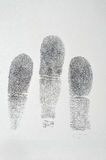 Black fingerprint on white paper. Background Stock Image