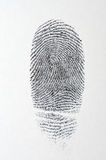 Black fingerprint on white paper. Background Stock Photos