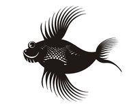 Black fish Royalty Free Stock Photography