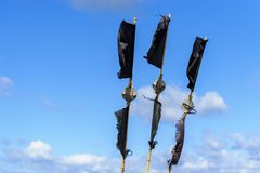 Black flags Stock Images