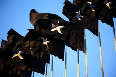 Black flags Stock Photos