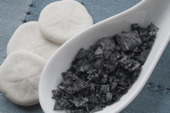 Black Flaked Sea Salt with Sand Dollars on Blue Stock Images