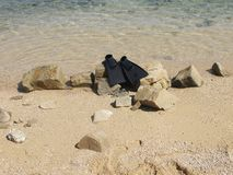 Black flippers on the beach Royalty Free Stock Photo