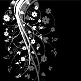 Black Floral Background Stock Image
