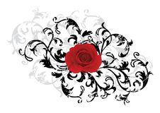 Black floral background with red rose Stock Photography
