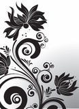 Black floral design Royalty Free Stock Photography