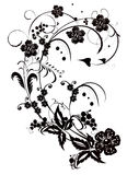 Black floral design Royalty Free Stock Photo