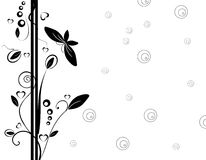 Black floral design Royalty Free Stock Image