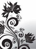 Black floral design element Stock Photo