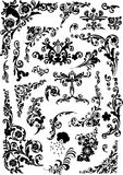 Black floral ornament curls Stock Image