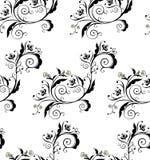 Black Floral Ornament Stock Image