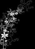Black Floral X stock illustration