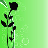 Black flower on a green background. Black flowers on a green background with circles Royalty Free Stock Photo