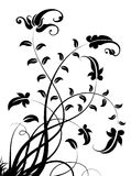 Black flower and leaves pattern Stock Photos