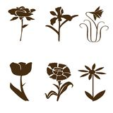 Black flower shapes Royalty Free Stock Images