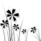 Black flowers. Abstract floral background with hearts Stock Photos