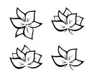 Black flowers illustration Royalty Free Stock Image