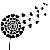 Black fluff dandelion heart shaped on white background Stock Photography