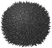 Black fluffy ball on white Stock Images