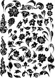 Black foliage decorated elements Stock Image