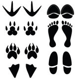 Black foot different animals on white Stock Photo